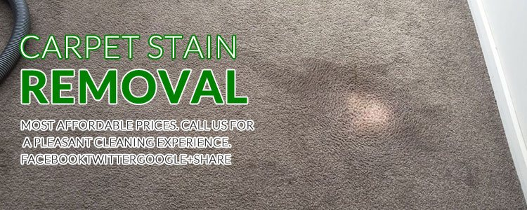 Carpet Stain Removal Brisbane