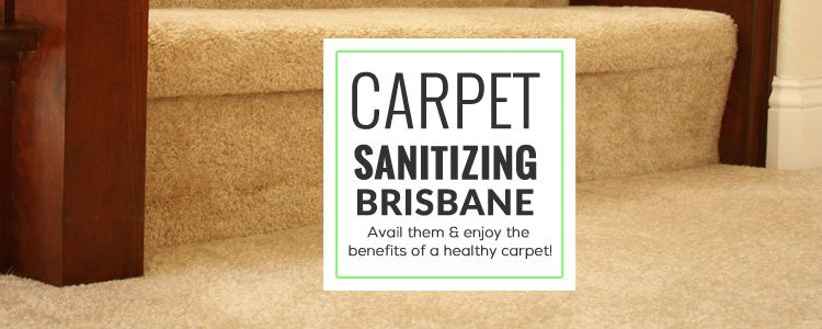 Carpet Sanitizing Brisbane