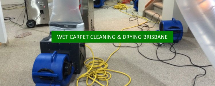 Wet Carpet Cleaning and Drying Brisbane