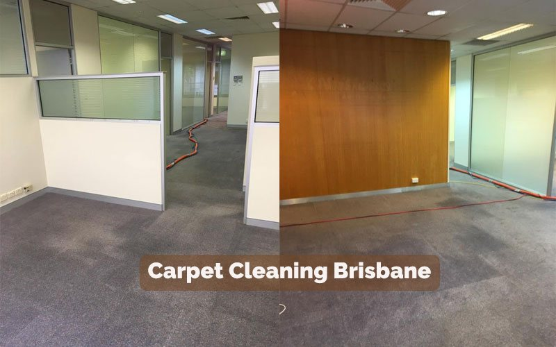 Carpet Cleaners North Booval
