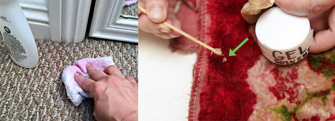 Remove Nail Polish From Carpets
