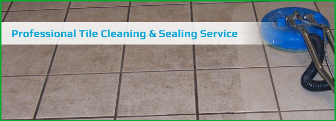 Tile Sealing Services in Ocean View
