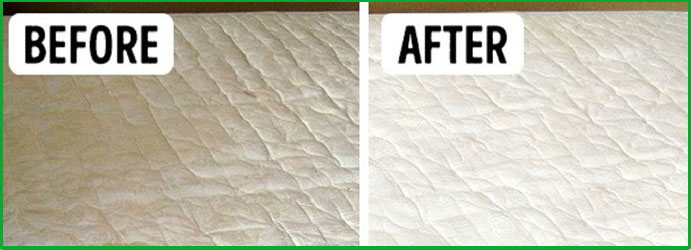Clean Urine from Mattress in Camira