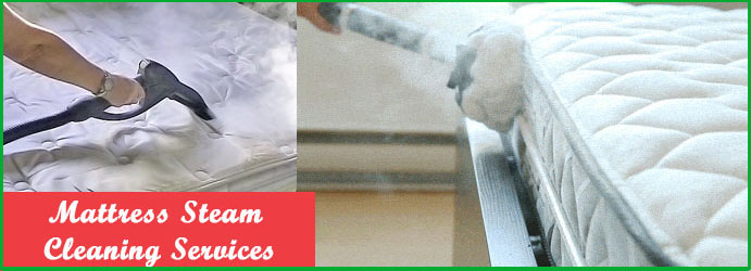 Steam Cleaning Mattress in Forest Lake