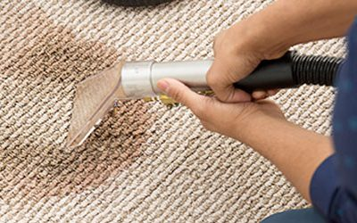 How to Clean your Carpet in Professional Style
