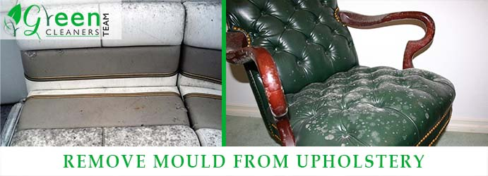 How To Remove Mould From Upholstery?