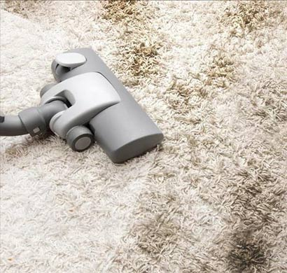 Carpet Mould Removal Seaford Heights