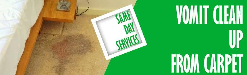 Carpet Vomit Stain Removal Marion Bay