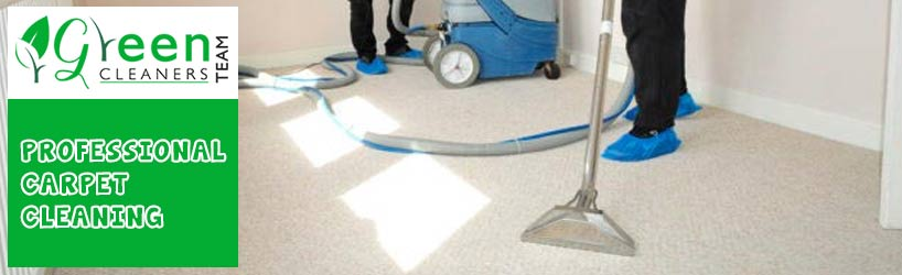 Professional Carpet Cleaning Greenway