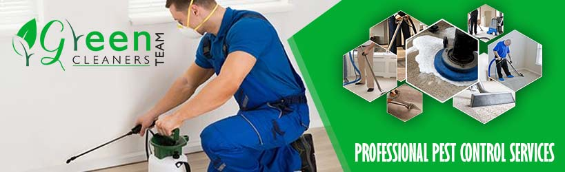 Professional Pest Control Capital Hill