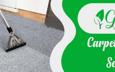 Steps to Keep Carpets Clean in The Stormy Season
