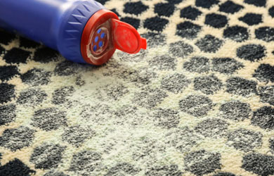 Flea Treatment Carpet Cleaning Service
