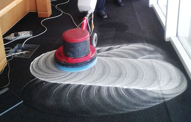 Carpet Shampooing Lower Peacock