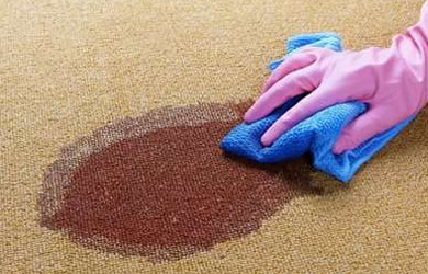 Carpet Stain Removal Bony Mountain