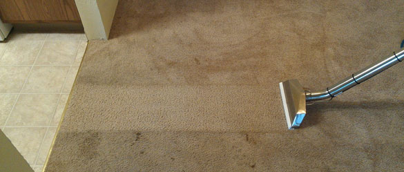 Expert Carpet Cleaning Services Dunoon