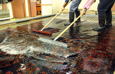 Rug Cleaning Boomi Creek
