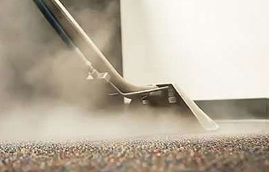 Steam Carpet Cleaning Sandy Ridges