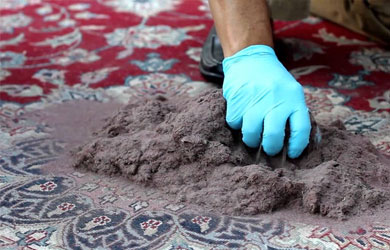 Wool Carpet Cleaning Bony Mountain