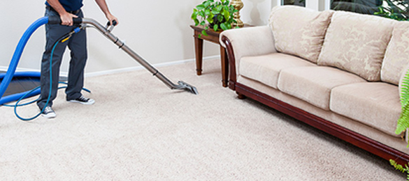 Best Carpet Cleaning Services Hobart