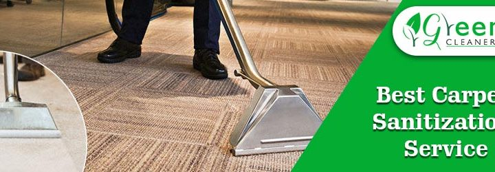 What Kind of Products Should you Use to Thoroughly Clean your Carpet While Maintaining Its Texture