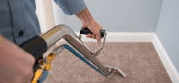 Best Carpet Cleaning Services Adelaid