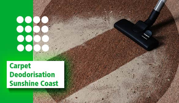 Carpet Deodorisation Sunshine Coast