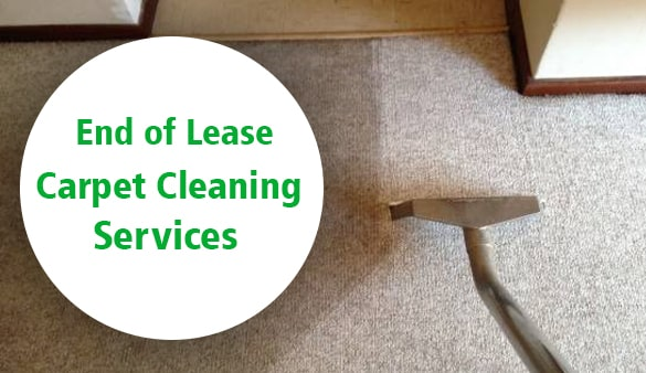 End Of Lease Carpet Cleaning Sunshine Coast